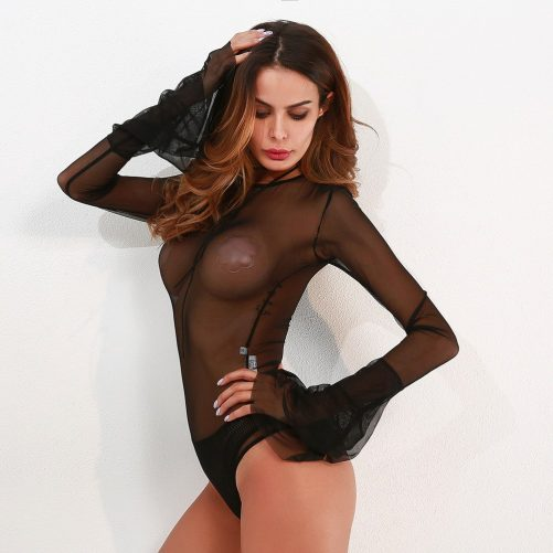 Sexy Transparent Mesh Bodysuit